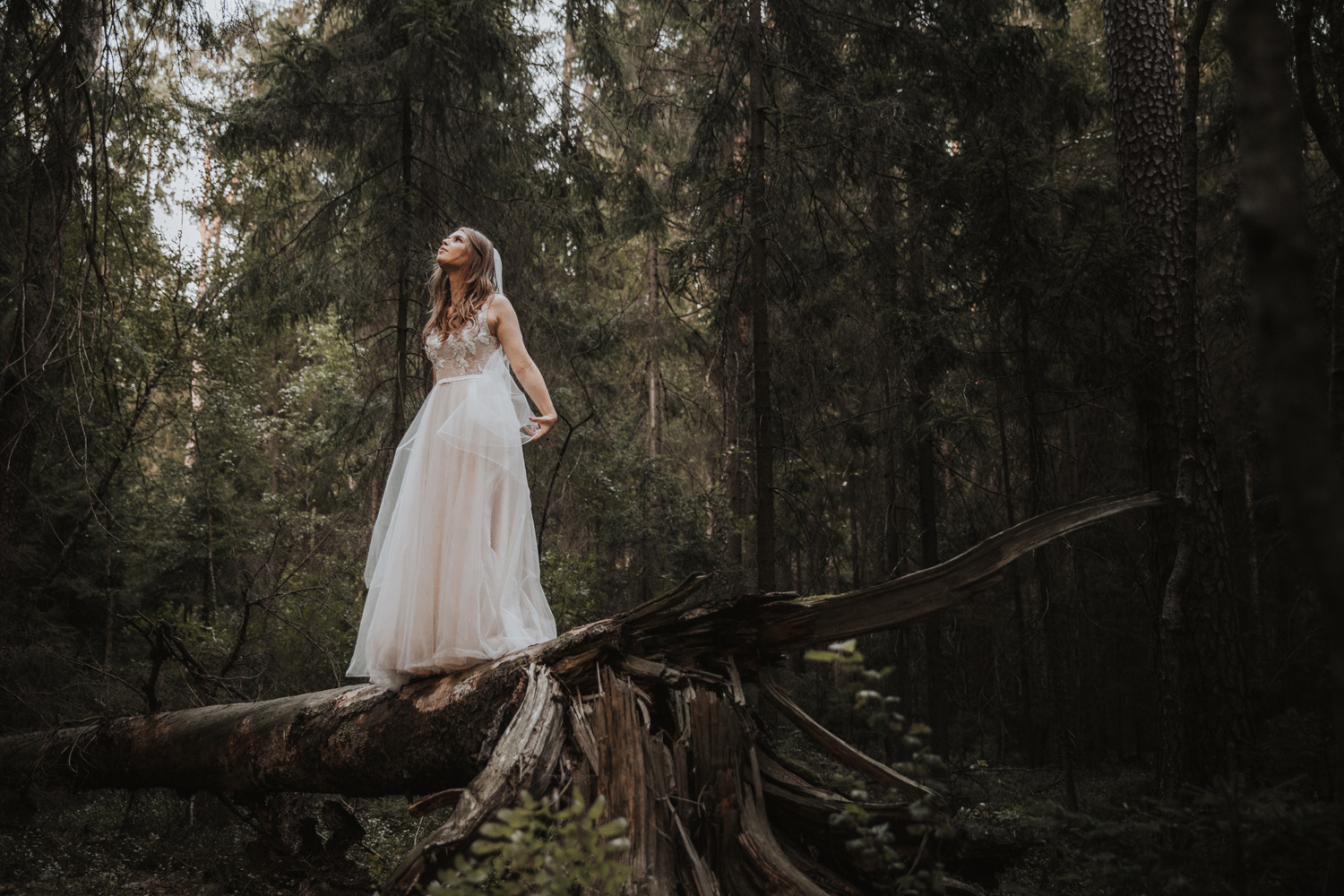 weddingphotograher_klaudia_rafal_nationalpark_508.jpg