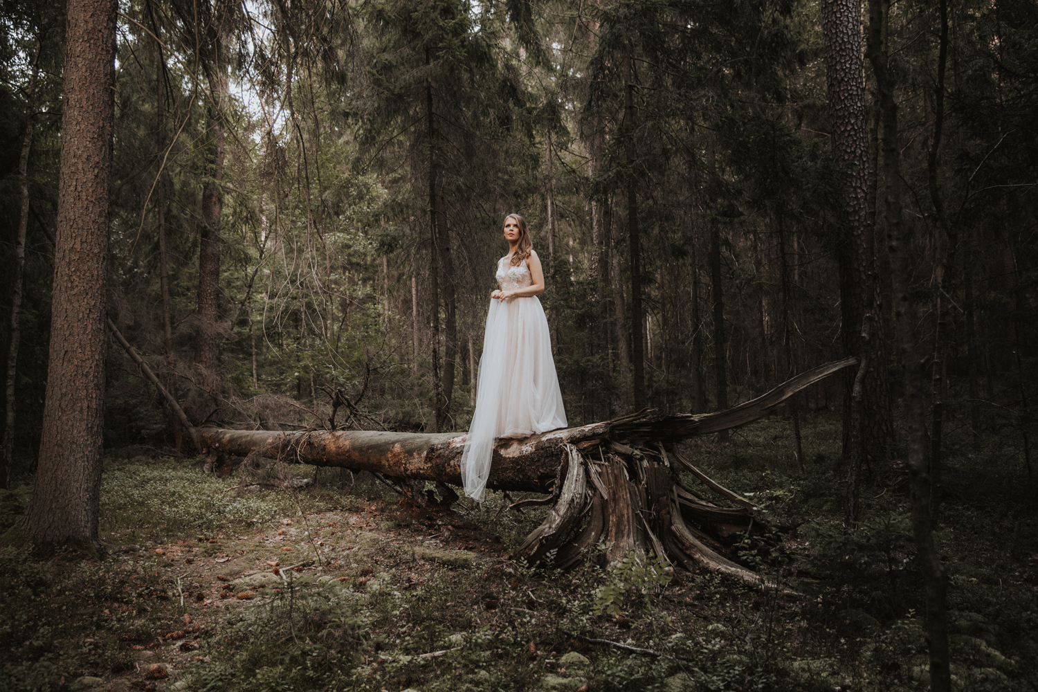 weddingphotograher_klaudia_rafal_nationalpark_509.jpg