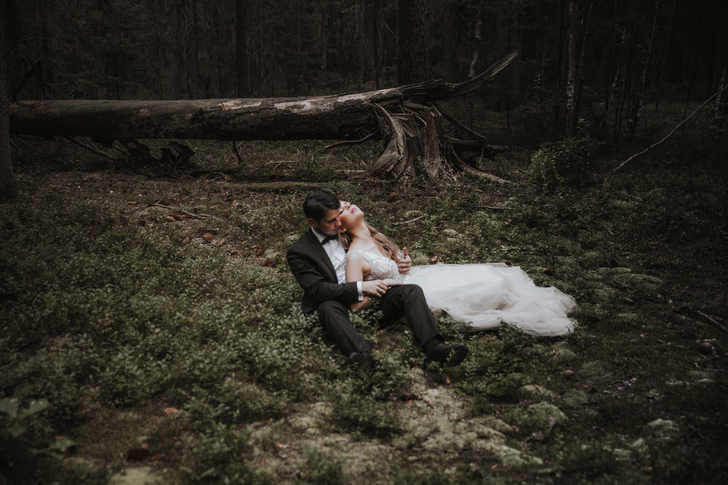 weddingphotograher_klaudia_rafal_nationalpark_519.jpg