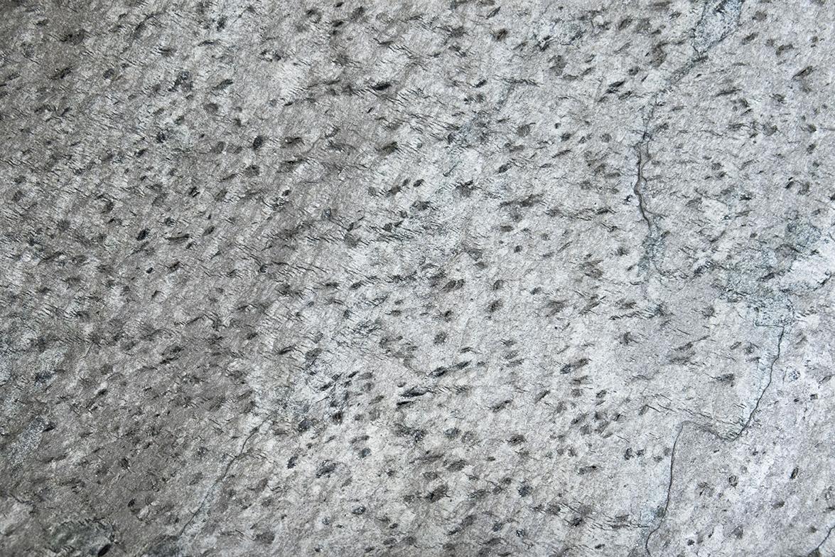 Mont Laroche