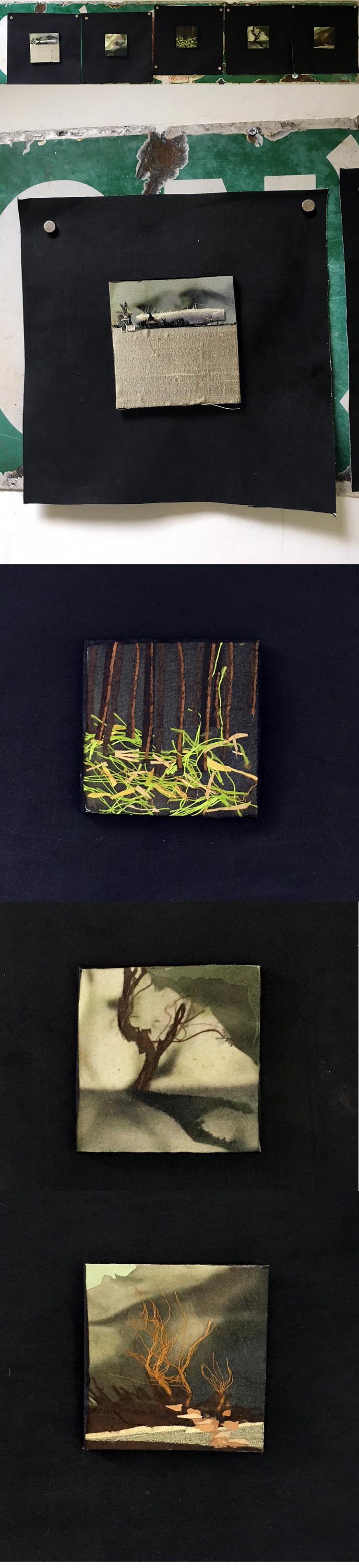imagined silk landscapes.jpg