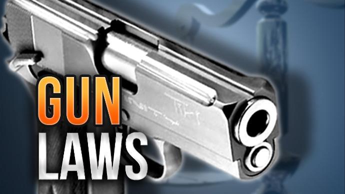 gun+laws+mgn.jpg