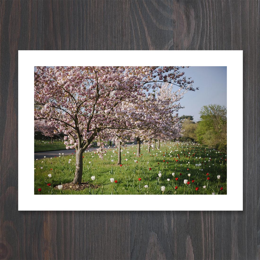 karolina-koziel-photography-products-prints.jpg