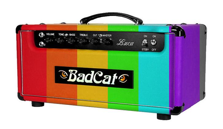 BadCat_LucaHeadAngle_Rainbow.jpg