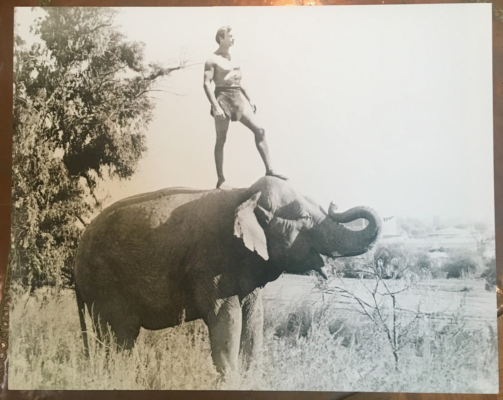 Foto Tarzan