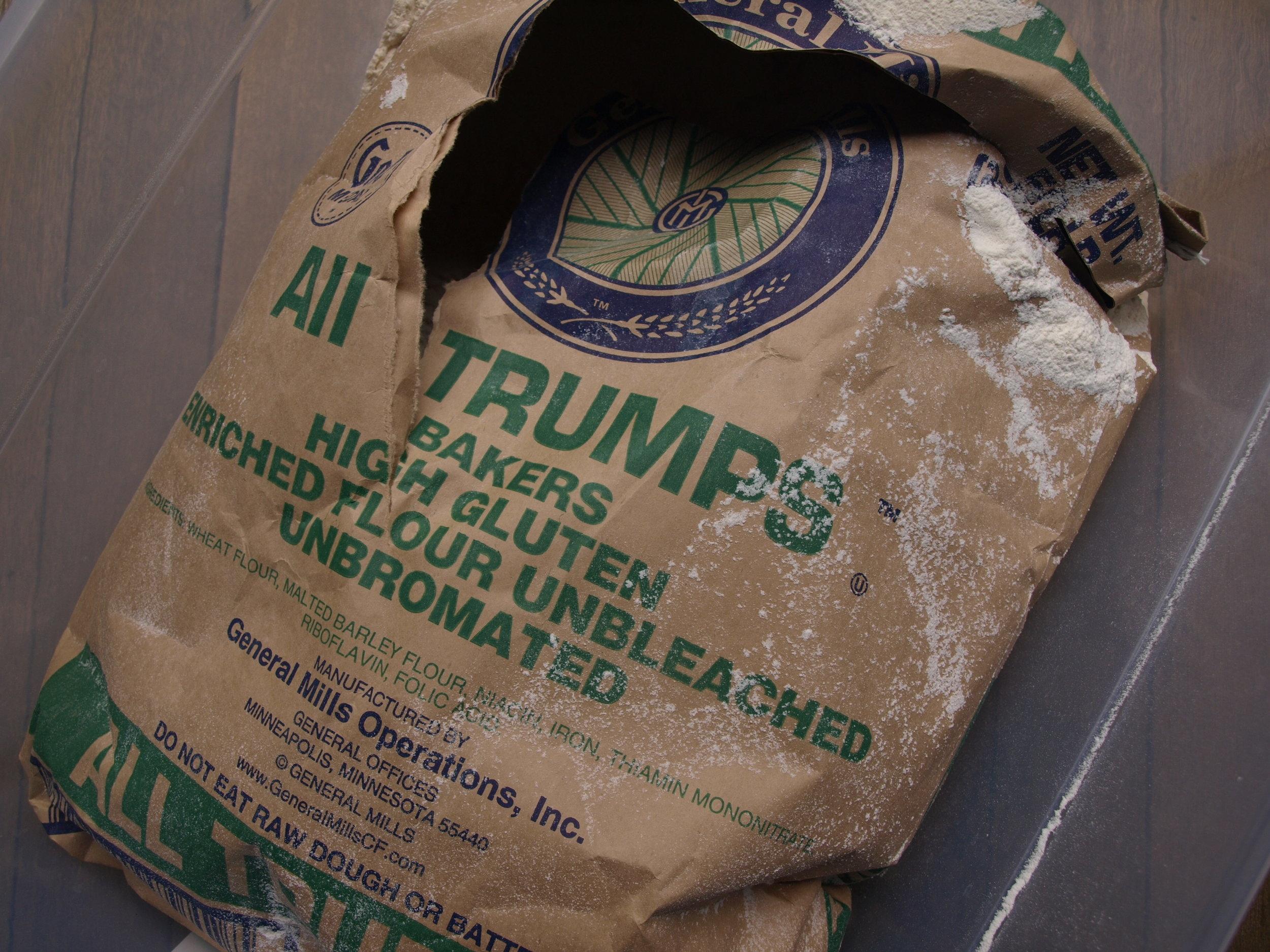 My 50 lb. bag of flour