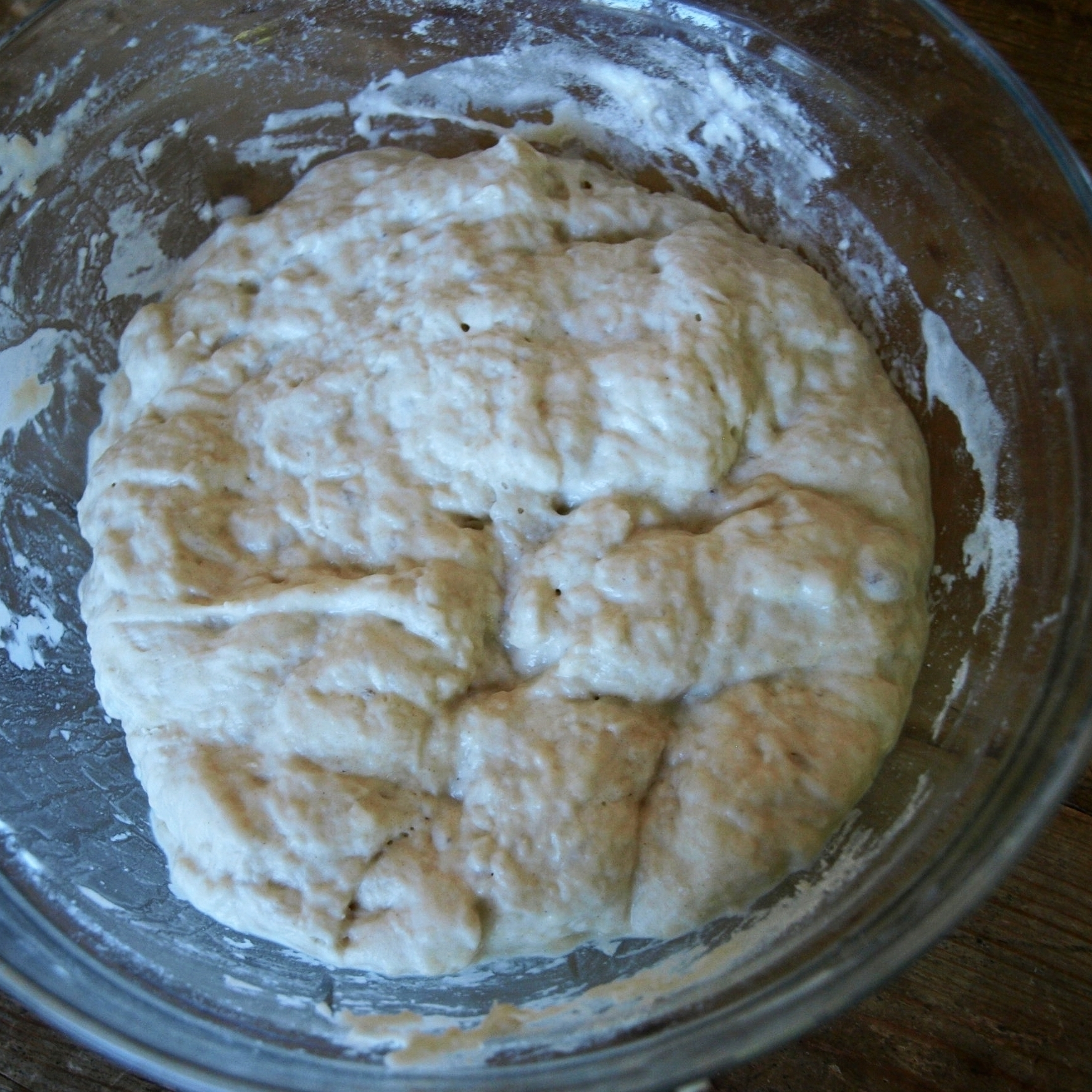 A wet, craggy dough