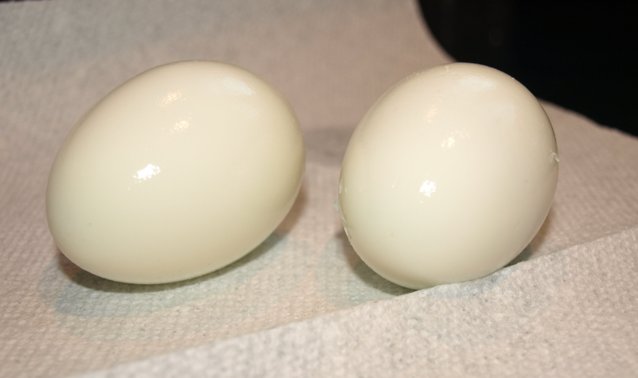 Eggs, Hard and Soft Boiled