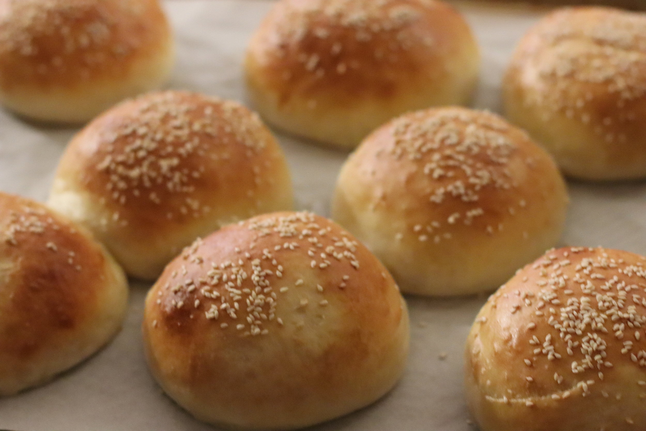 Potato Hamburger Rolls