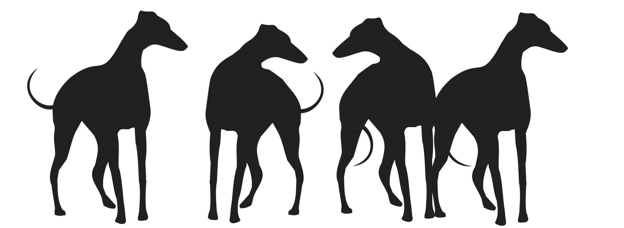 Logo - Inverted.jpg