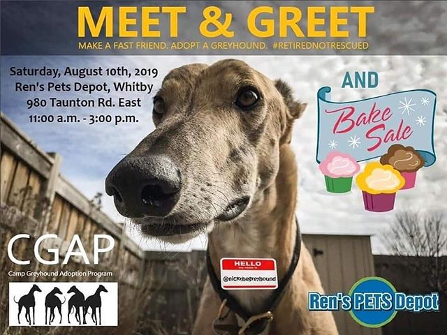 Hey Whitby and area friends! Go check out GCAP at Ren's Pets on Taunton Rd E. tomorrow between 11 and 3!!! There's even a bake sale!