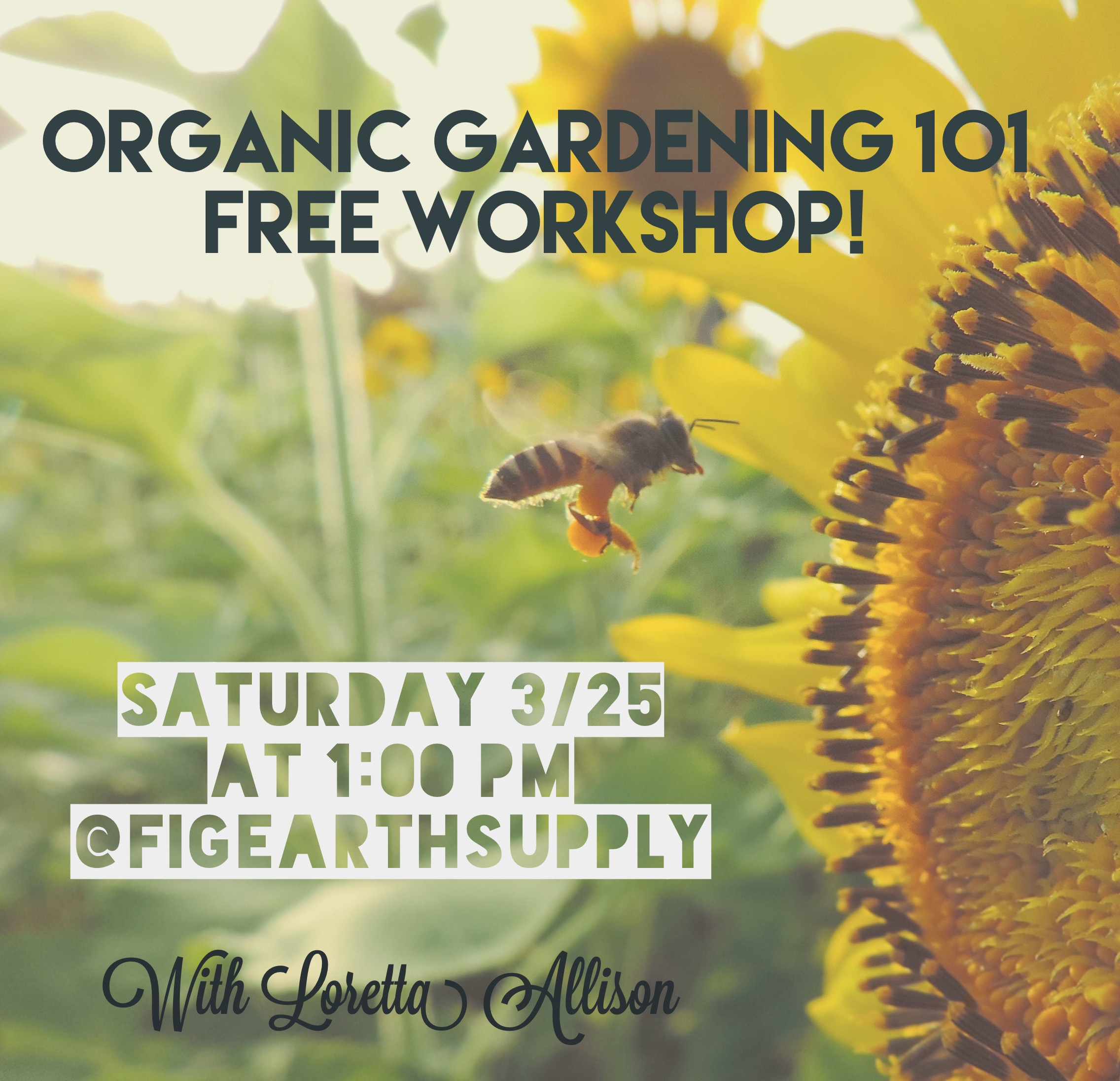 organic-gardening-workshops-los-angeles-california.JPG