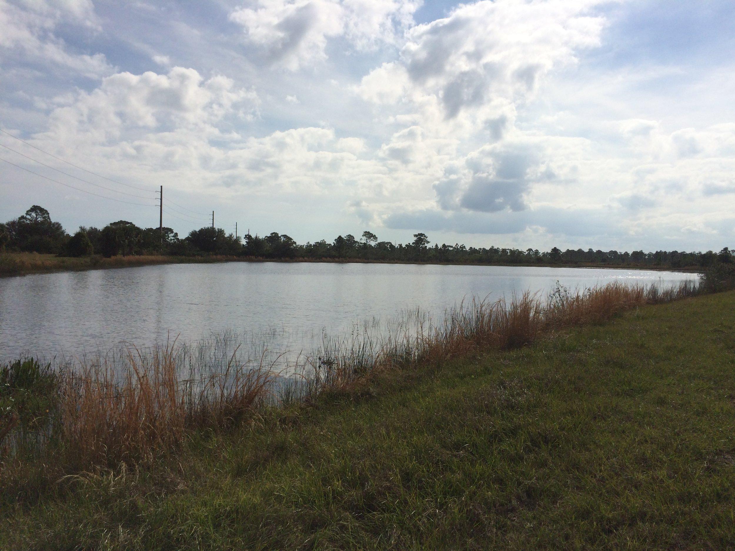 Oakmont Preserve Lot 42 - 2393 Westhorpe Dr Malabar FL 32950 - View