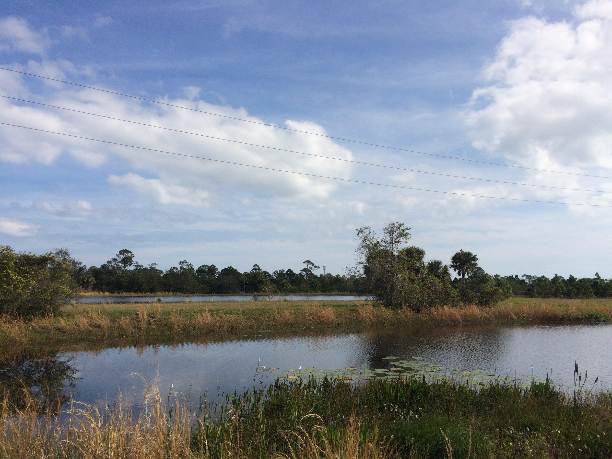 Oakmont Preserve Lot 42 - 2393 Westhorpe Dr Malabar, FL 32950