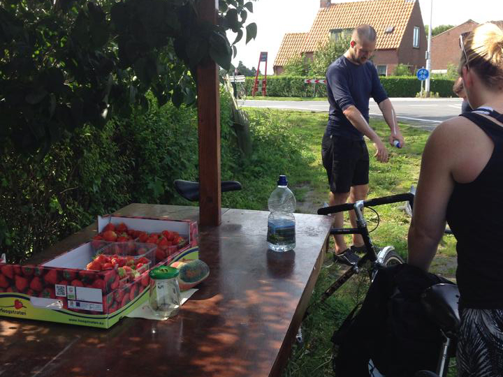 stopping-for-strawberries-on-the-north-sea-cycling-route-awamu.co_.uk_.jpg
