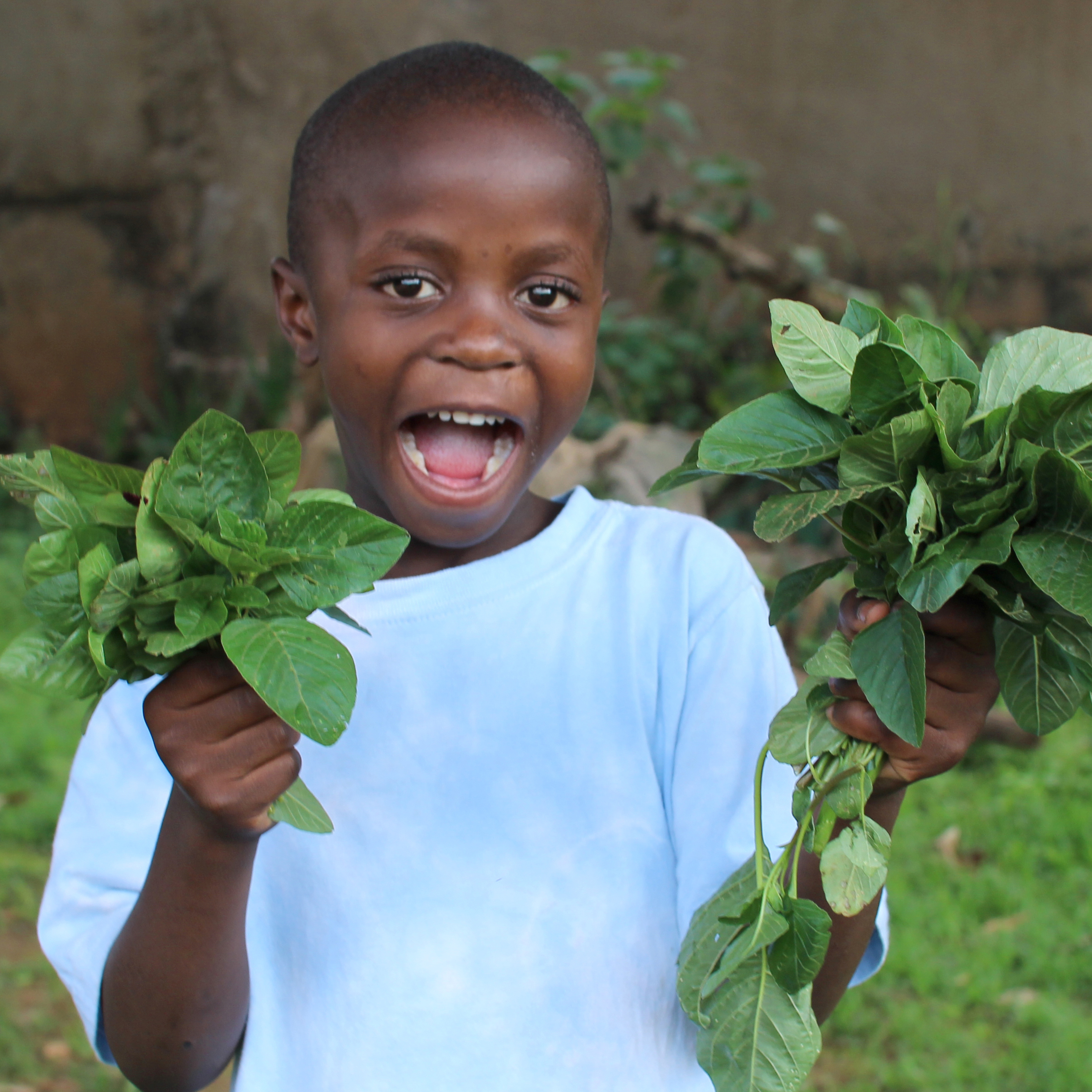 Awamu community gardens in Uganda