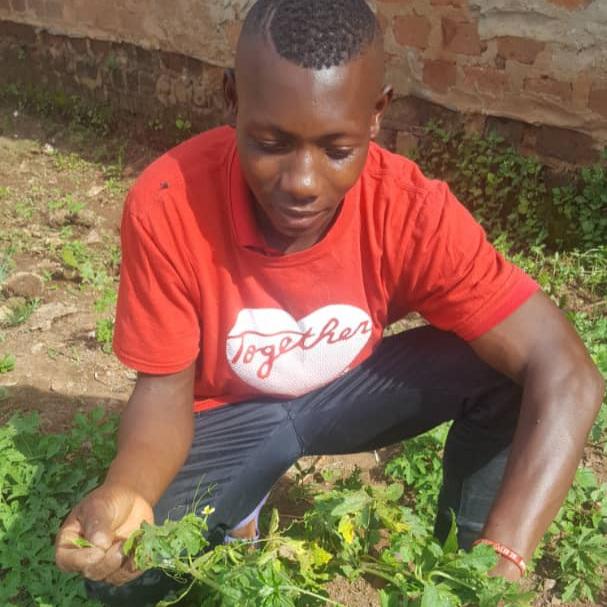 John in his vegetable garden