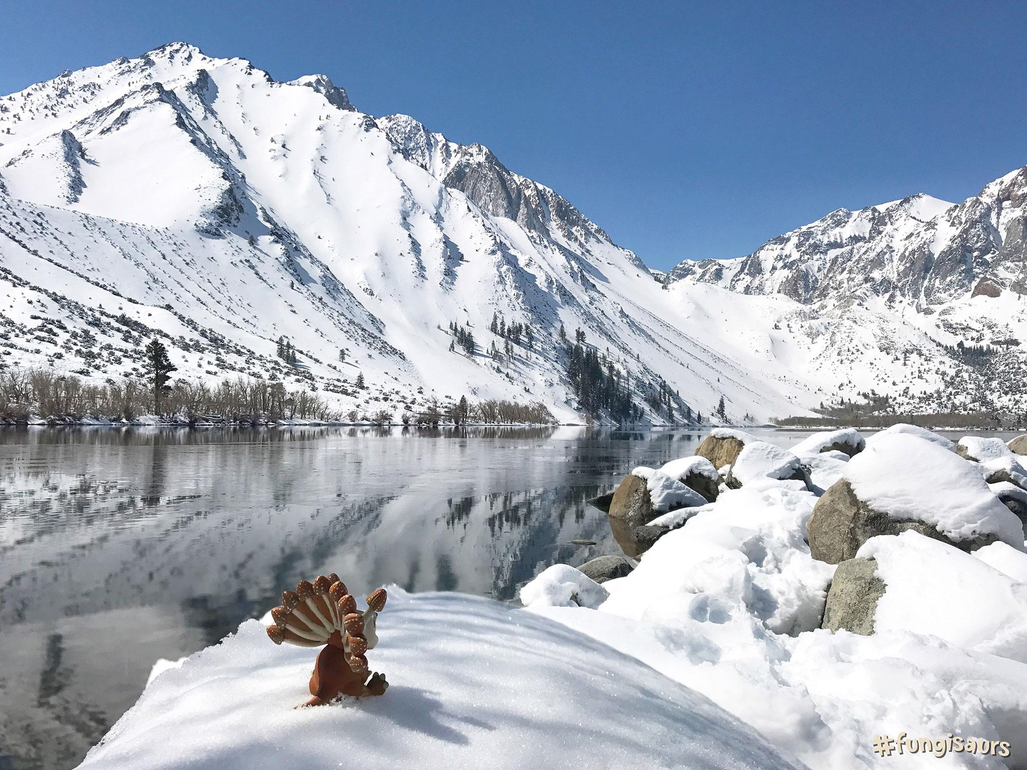 Mammoth Lake, California, USA