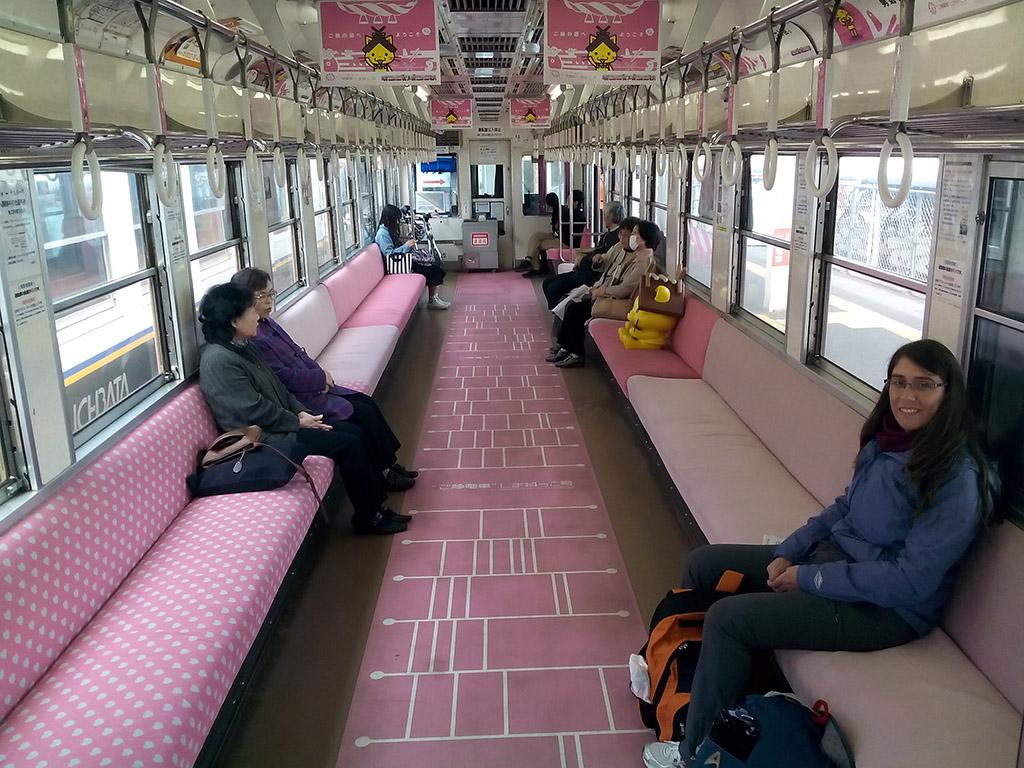 Tren rosadito chuchi