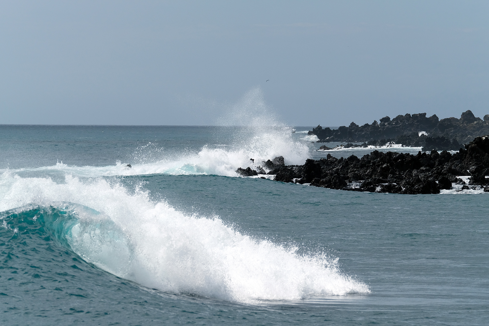 09_isla_Floreana_snorkeling_playa_Loberia_02.JPG