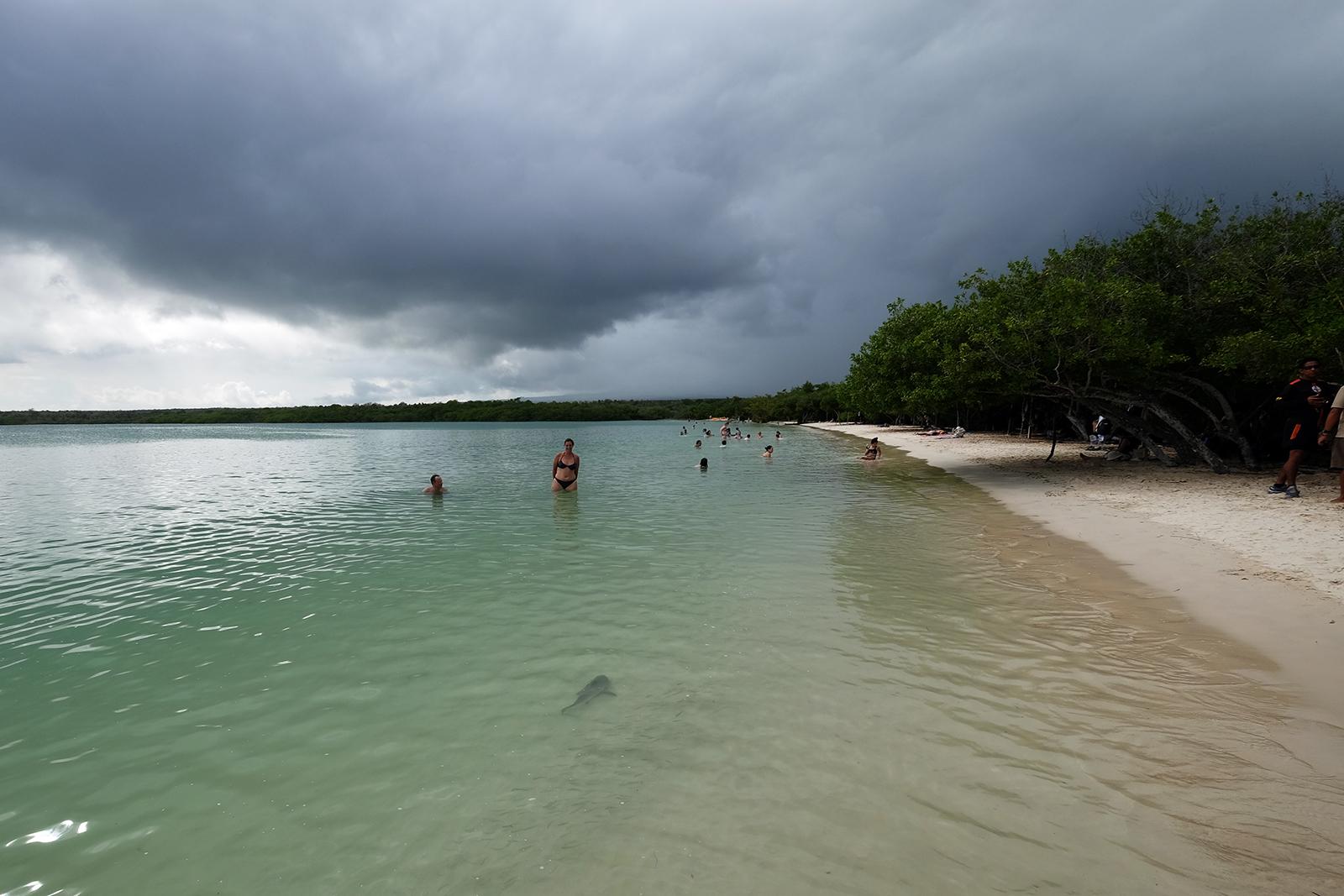 Playa Bahia Tortuga
