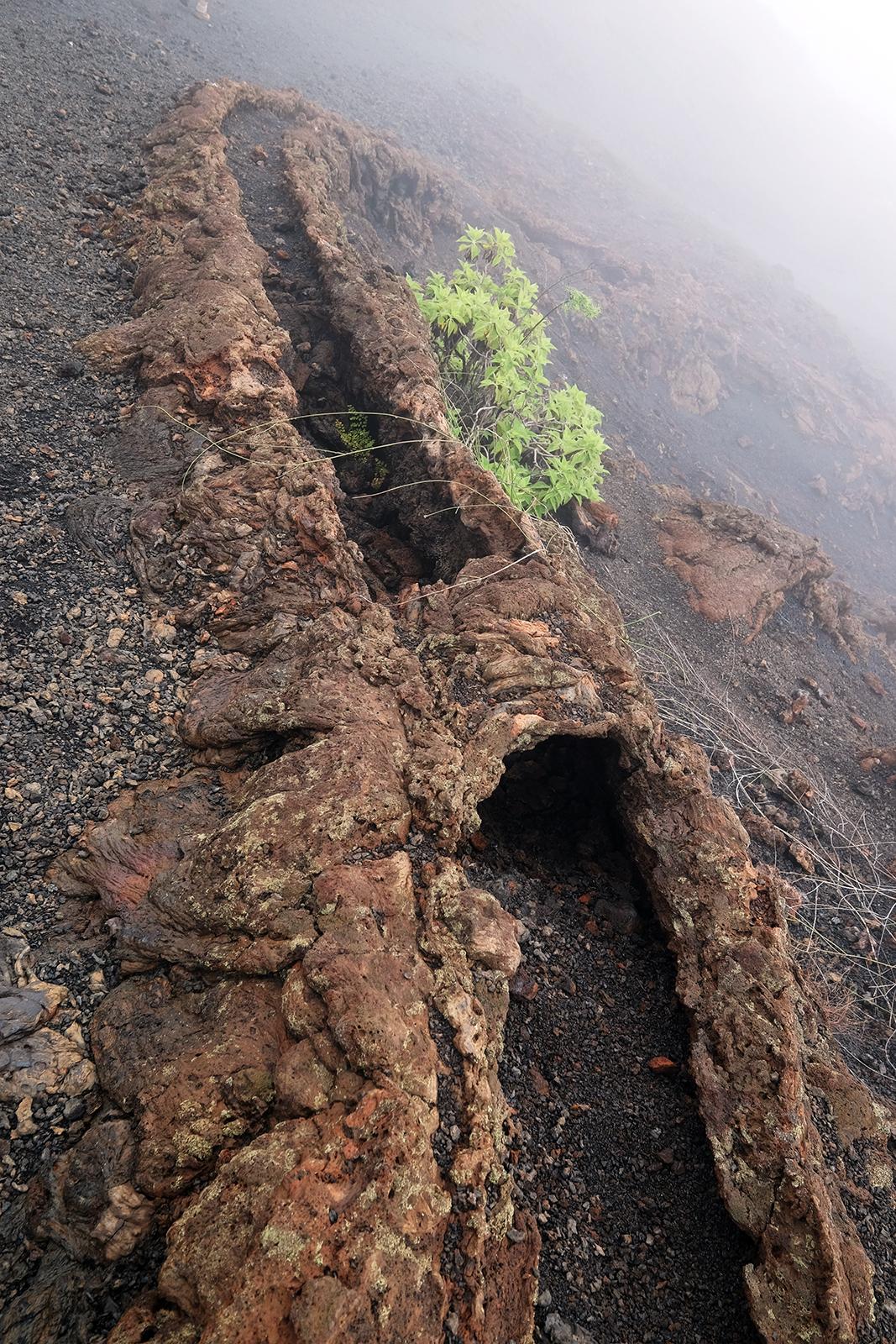 01_Volcan_Sierra_Negra_09_volcan_Chico_mini_tuneles.JPG