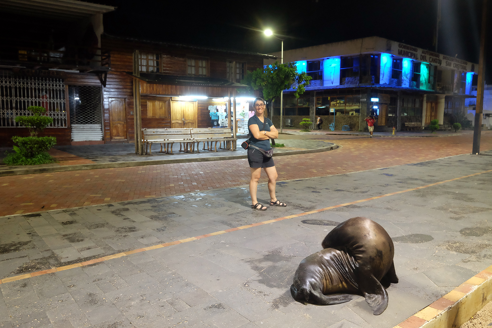 Puerto Barquerizo Moreno  por la noche