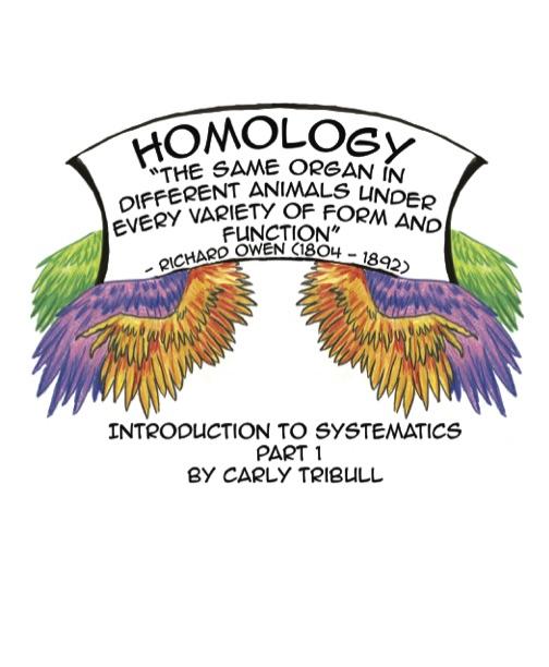 HomologySmallerJPGS.jpg