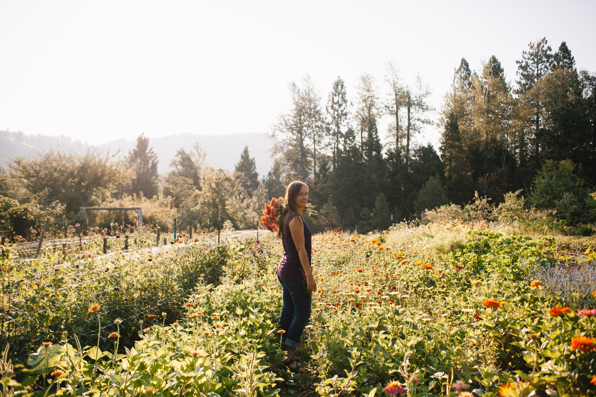 southern-oregon-flower-farms-233.jpg