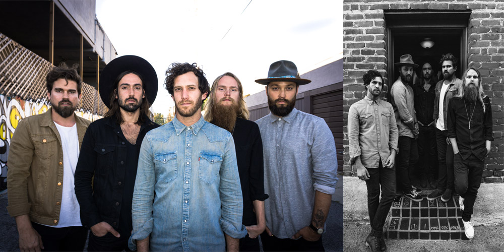 Grizfolk for website.jpg