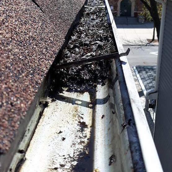 Chicago-Gutter-Cleaning-Debris-In-Gutter.jpg