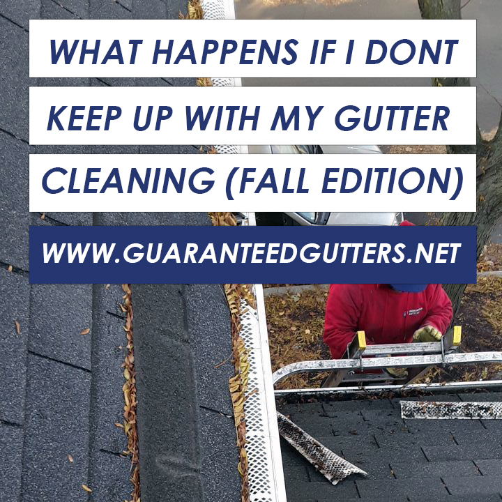 What Happens If I Dont Keep Up With My Gutter Cleaning-Fall Edition.jpg