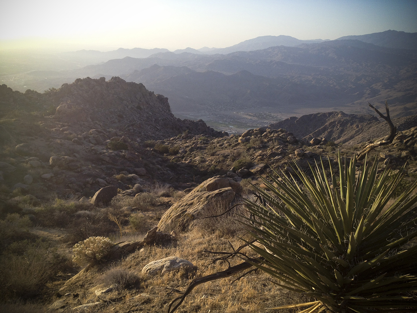 "PALM SPRINGS  ""CACTUS TO THE CLOUDS TRAIL""  10,000' ELEVATION GAIN TO SUMMIT"