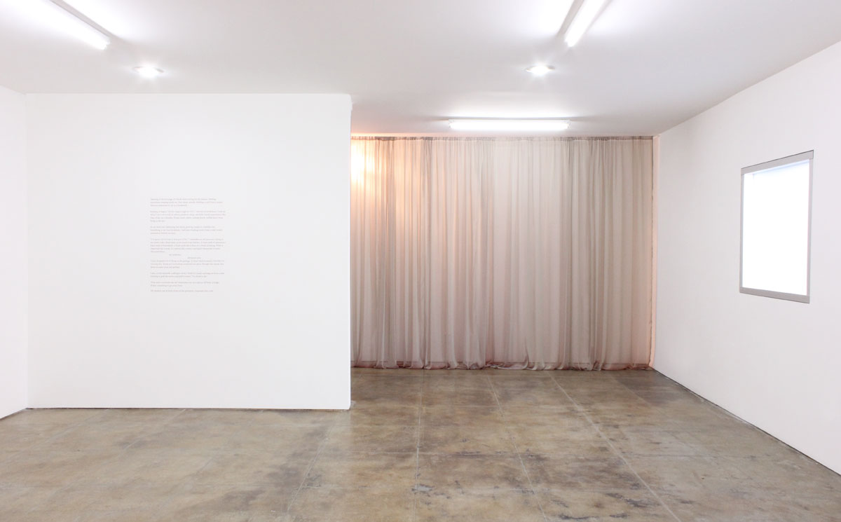 "Installation view, ""Book of Shadows"""