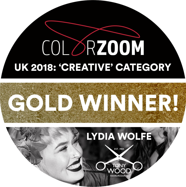 Gold Winner Goldwell Color Zoom 2018.jpg