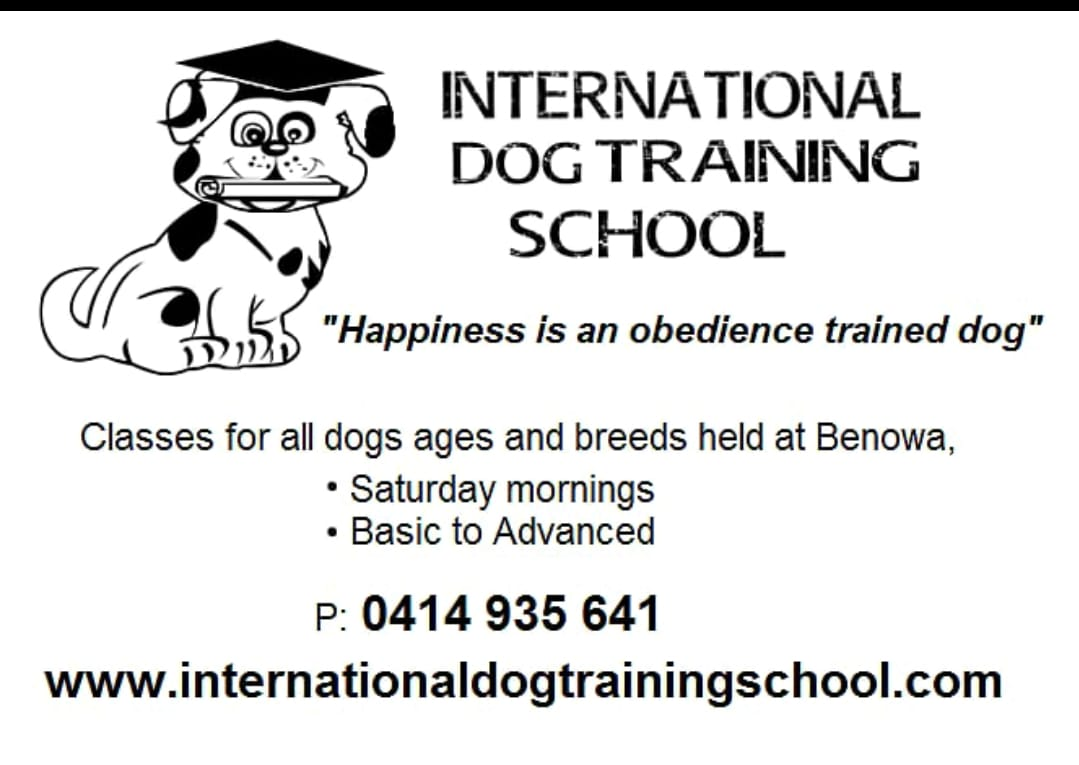 international dog training.jpg