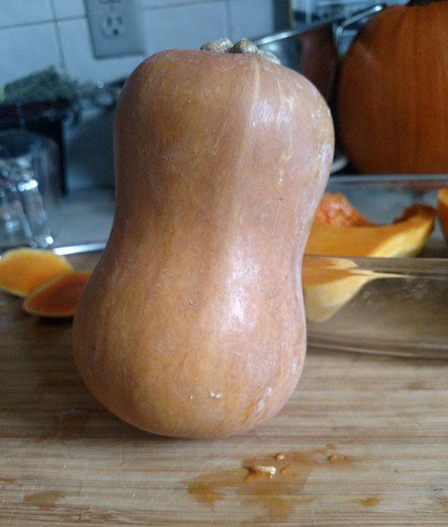 Cute Produce #localproduce #organicproduce #honeynutsquash #autumn #playwithyourfood