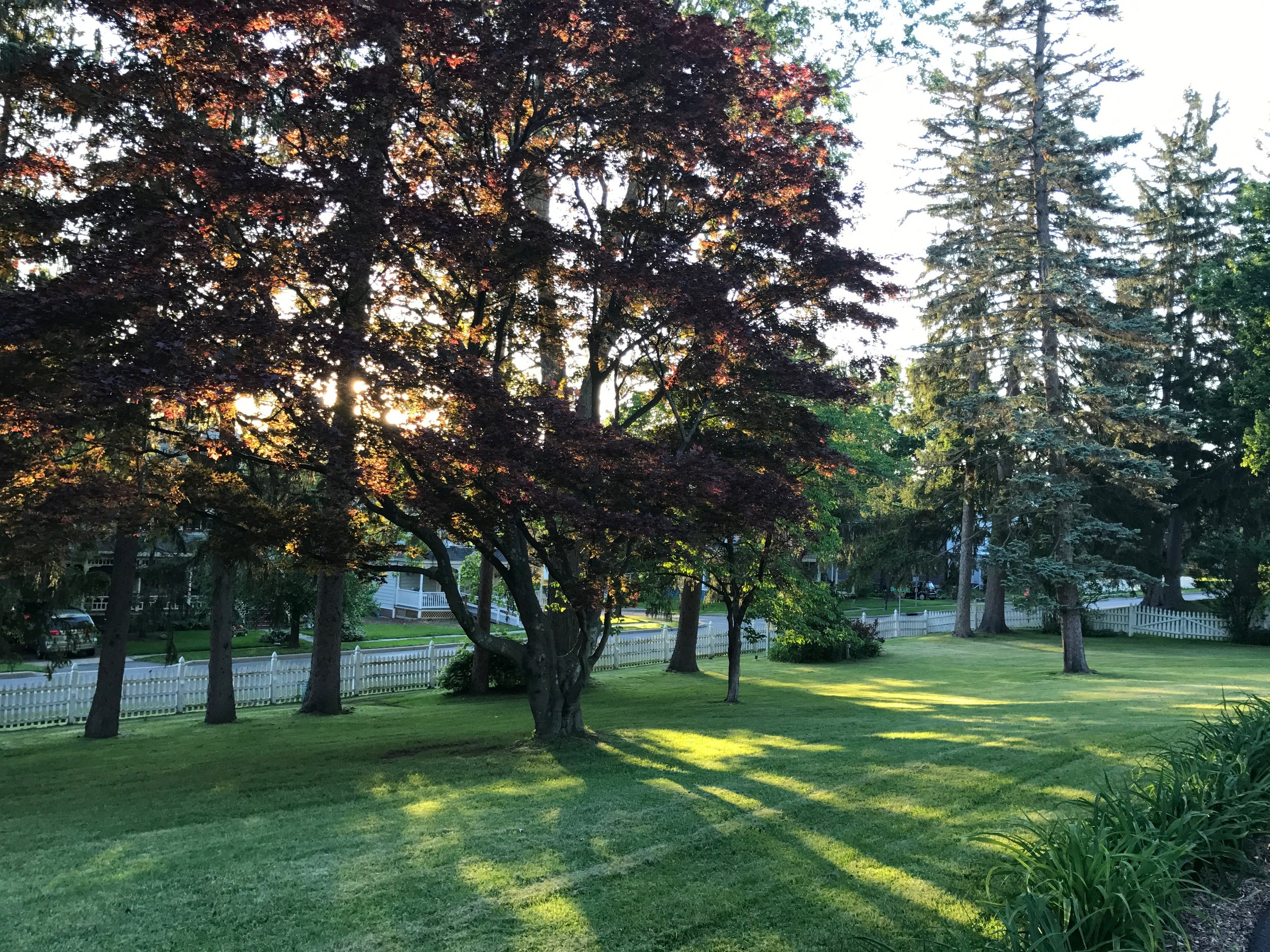Stroll The Post Cottage's Park-Like Grounds -