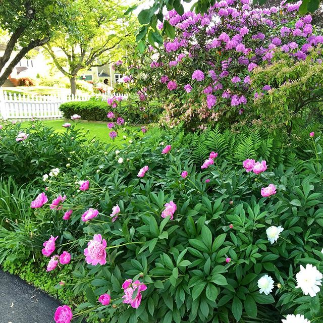 """To plant a garden is to believe in tomorrow."" -Audrey Hepburn"