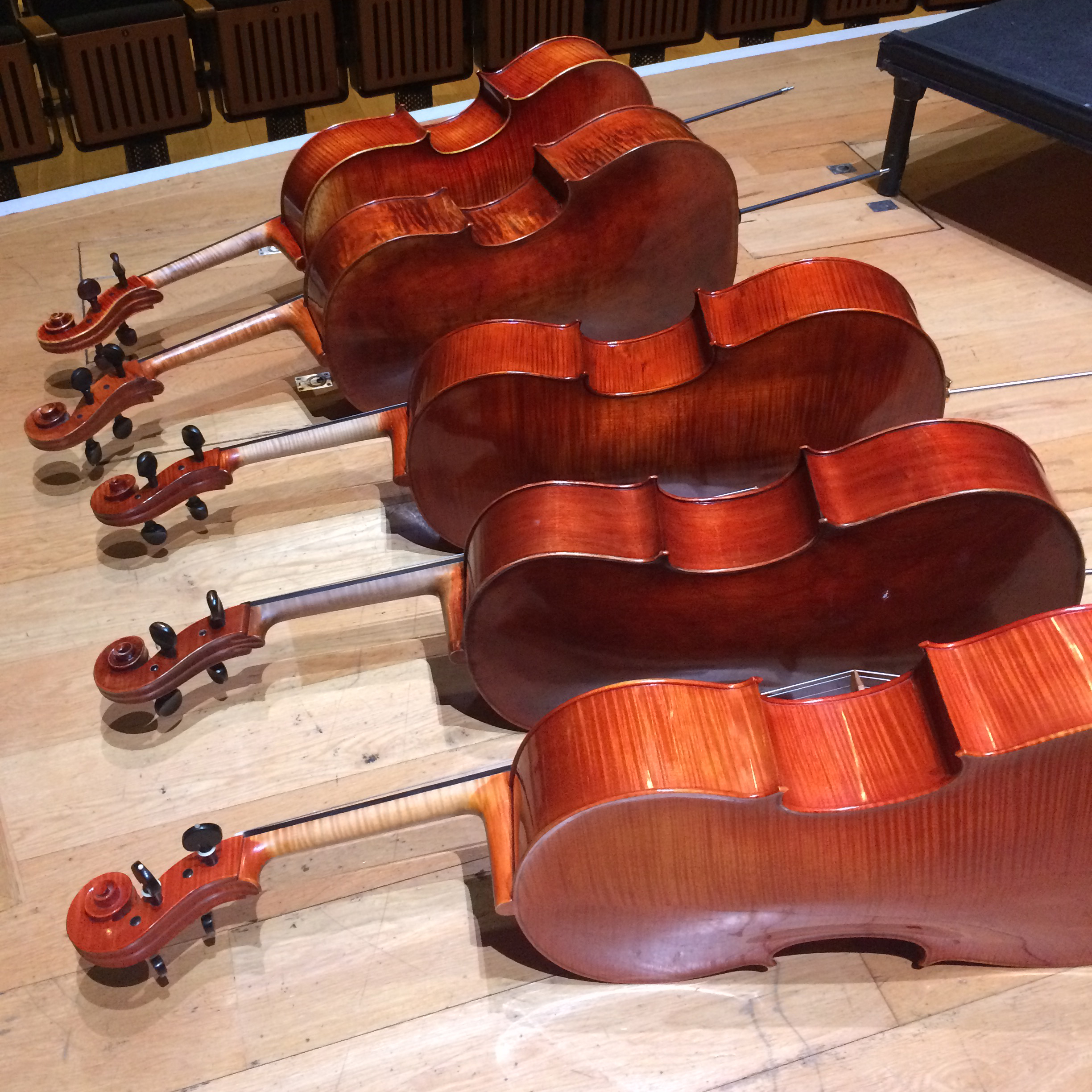 The cellos just asking for me to trip over them