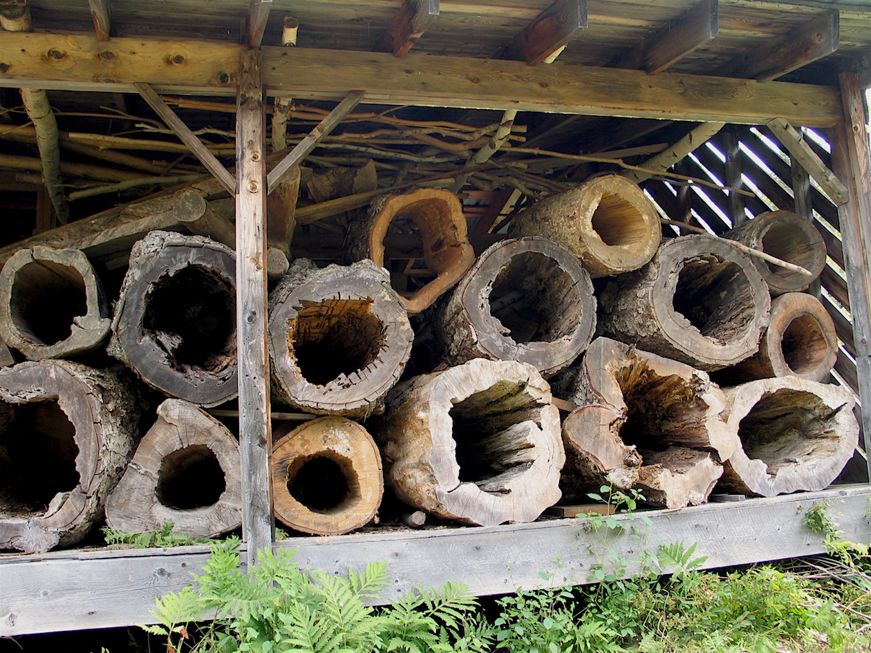Woodshed full of hollow logs