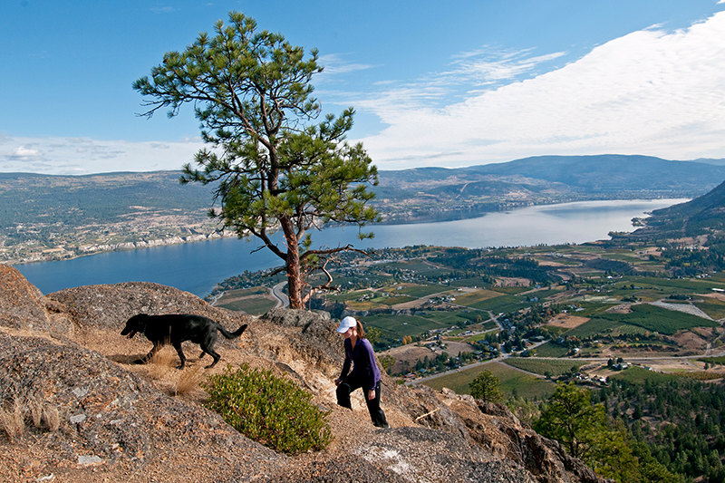 Image:  Tourism Summerland