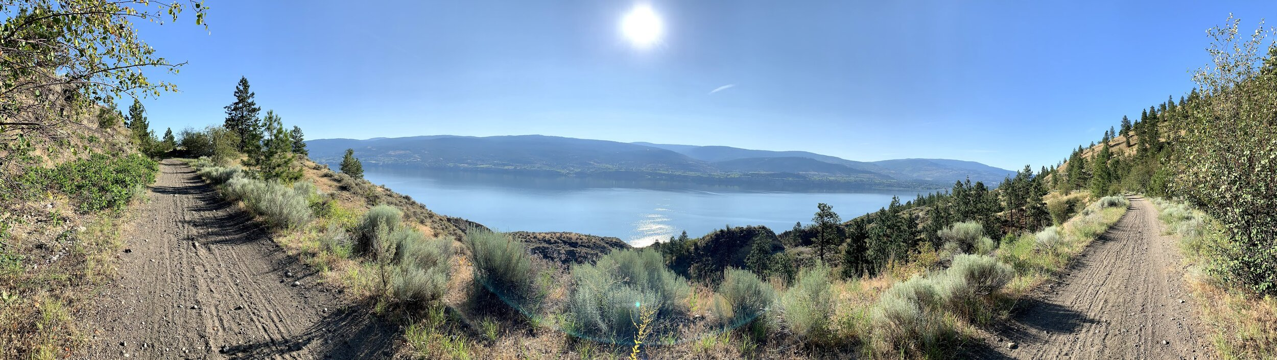 Photo: Dr. Tosca Killoran. KVR trail from Summerland to Penticton