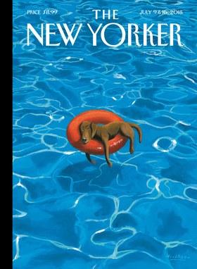New Yorker in the Penny Press.jpg