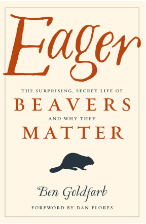 Eager_Beavers_and_Why_They_Matter.png
