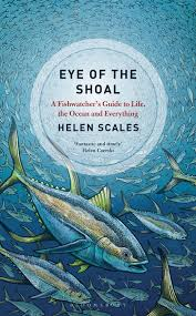 eye of the shoal.jpg