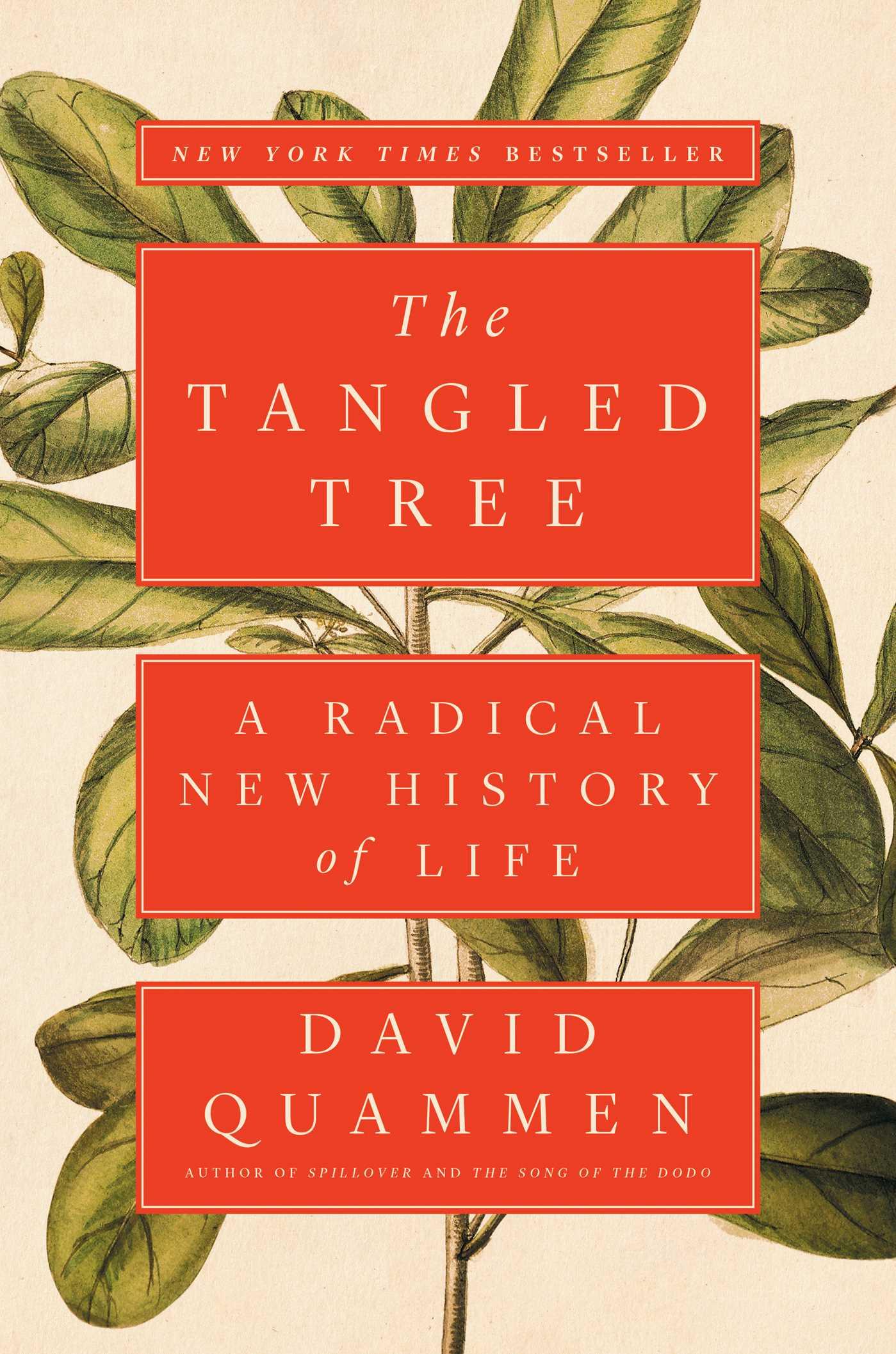the tangled tree.jpg