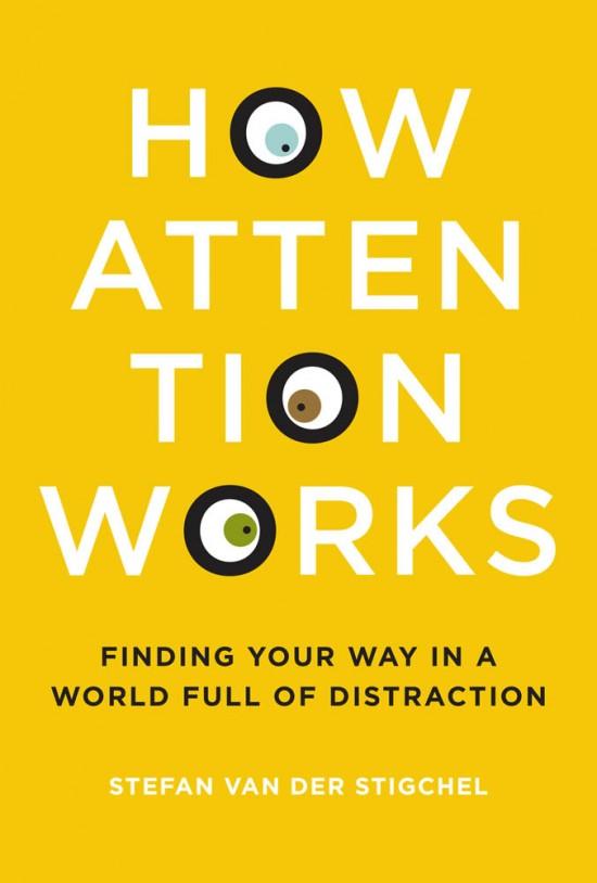 How Attention Works by Stefan Van Der Stigchel