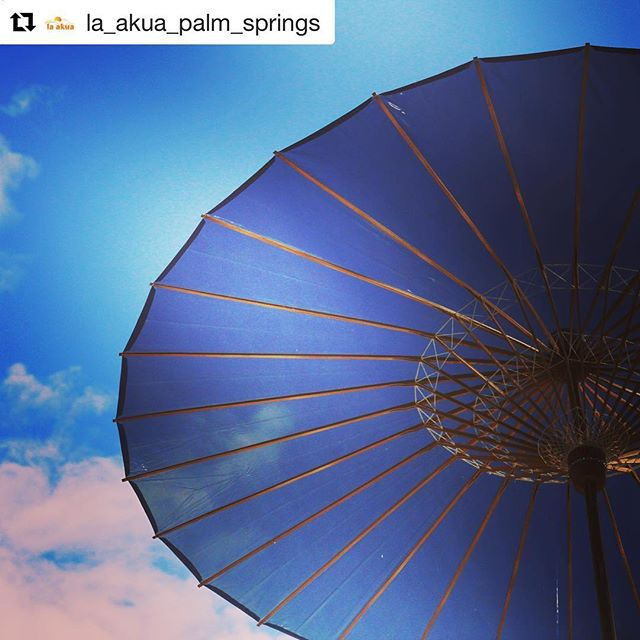 Love this photo! Protect your skin from Harmful UV Rays with BRELLI #Repost @la_akua_palm_springs ・・・ #Parasols are the perfect option to stay protected in the #sun