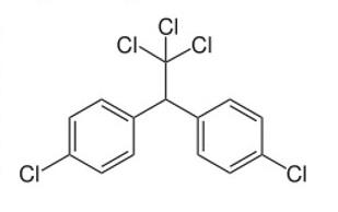 DDT+5.jpg
